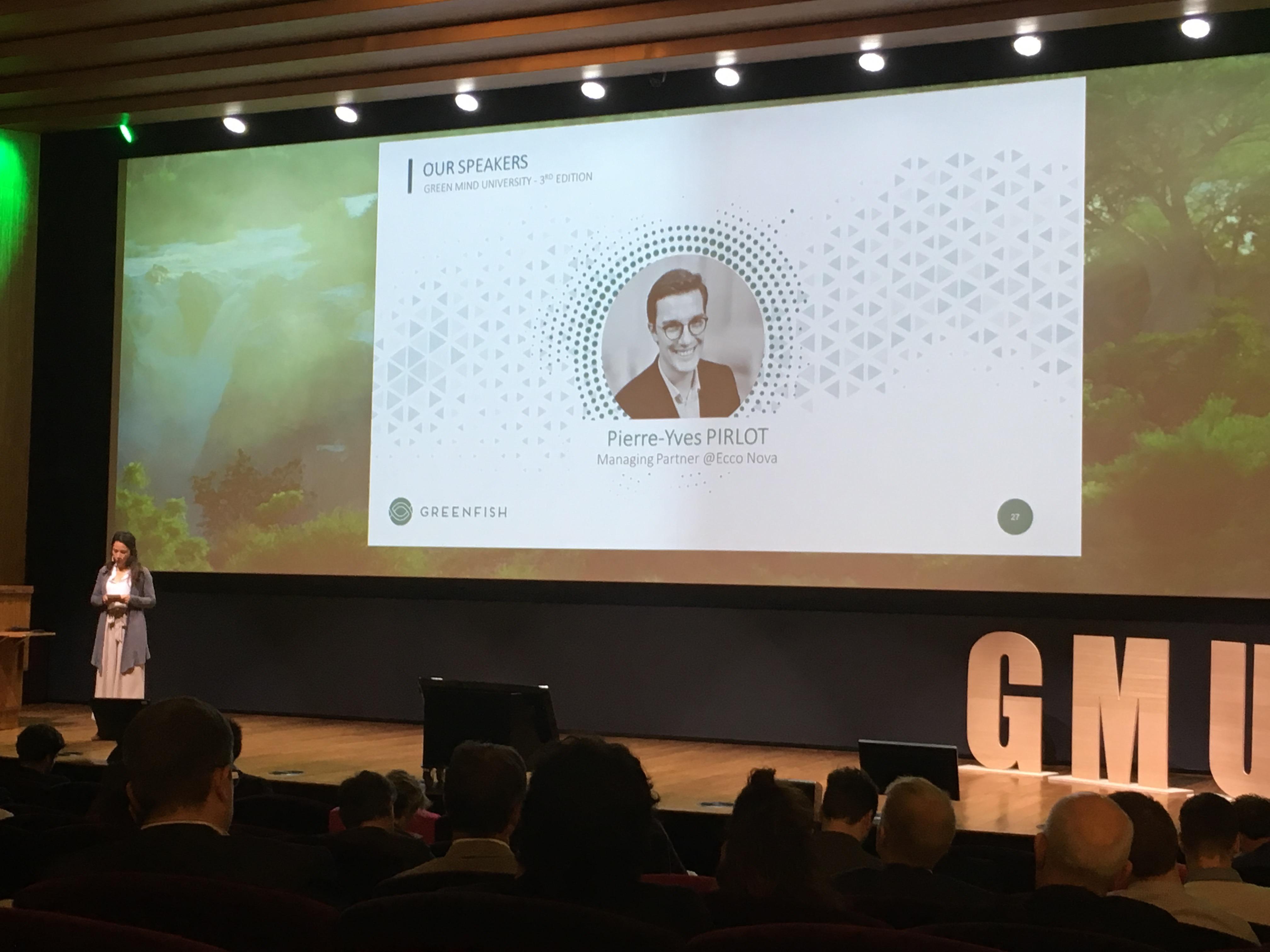 greenfish presentation slide